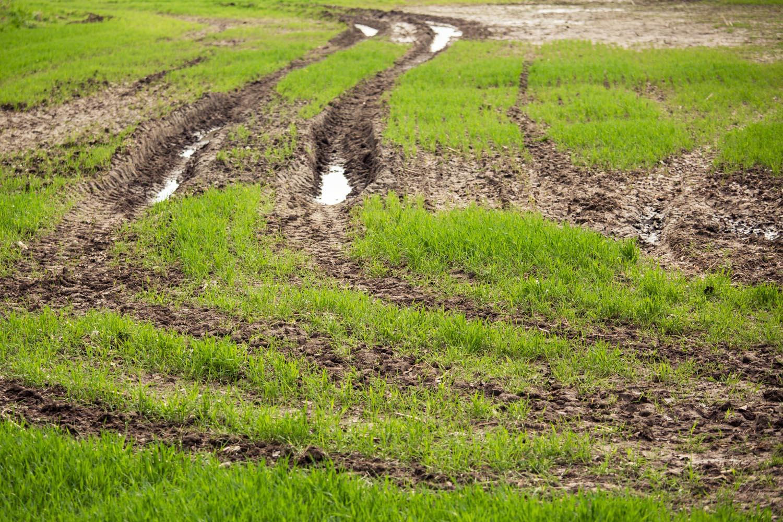 viertel_vor_landwirtschaft-2