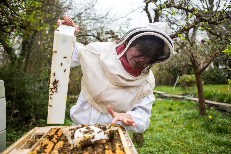 viertel-vor-stadtbienen-erika-mayr-photo-marcus-werner-69