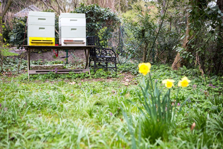 viertel-vor-stadtbienen-erika-mayr-photo-marcus-werner-75