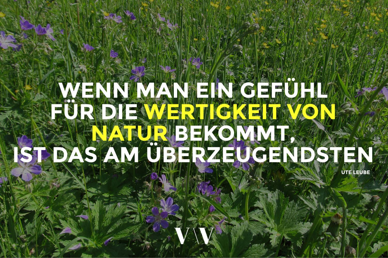 VV_UTE_LEUBE2