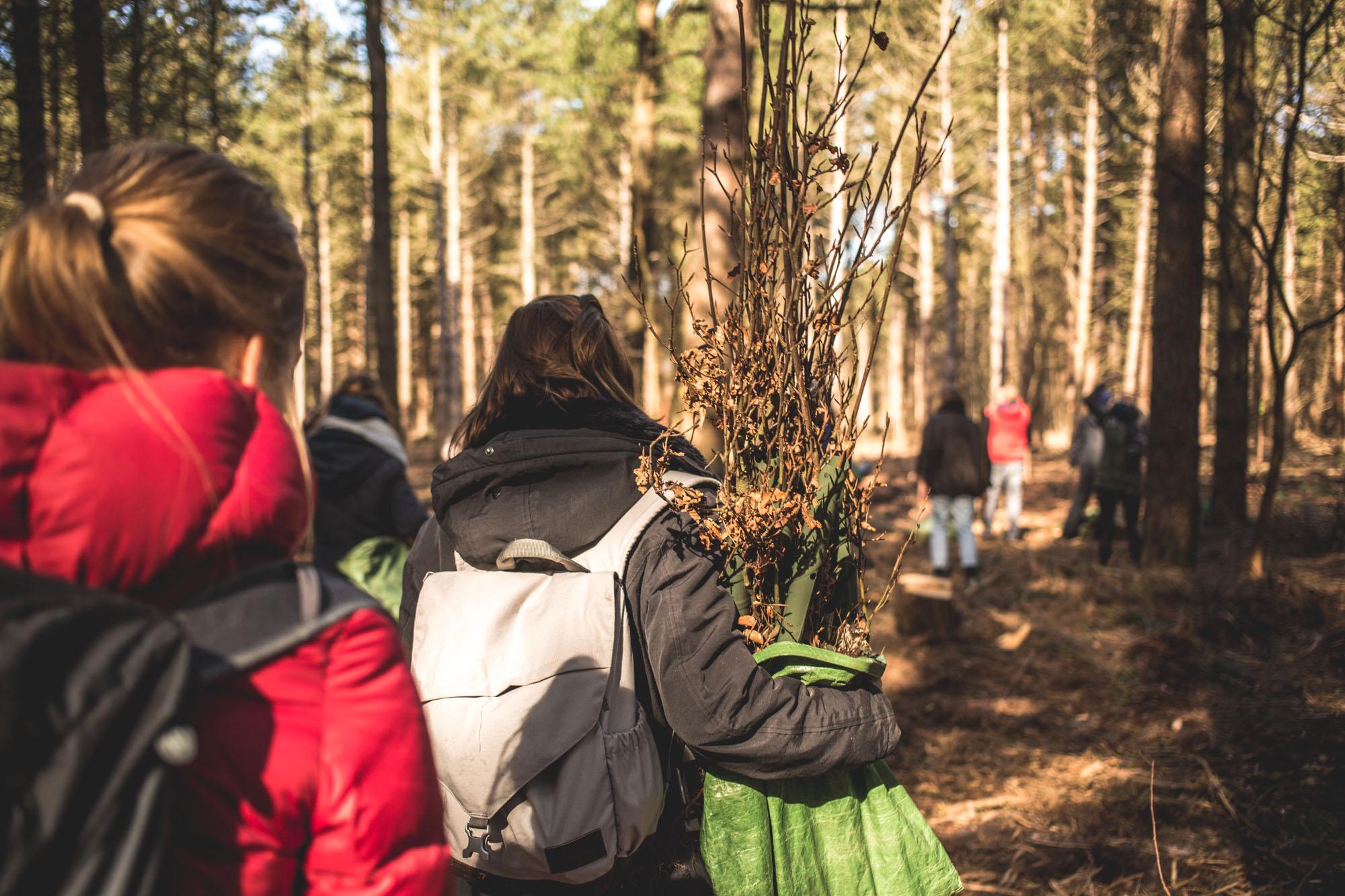 viertel-vor-amrum-bergwaldprojekt-17