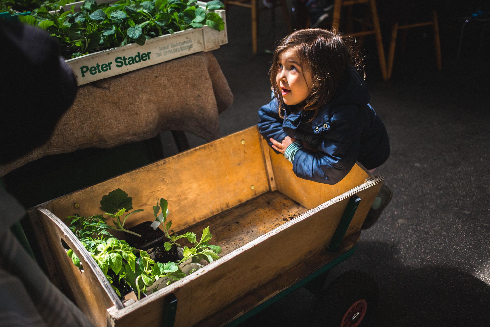 viertelvor_pflanzenmarkt-1